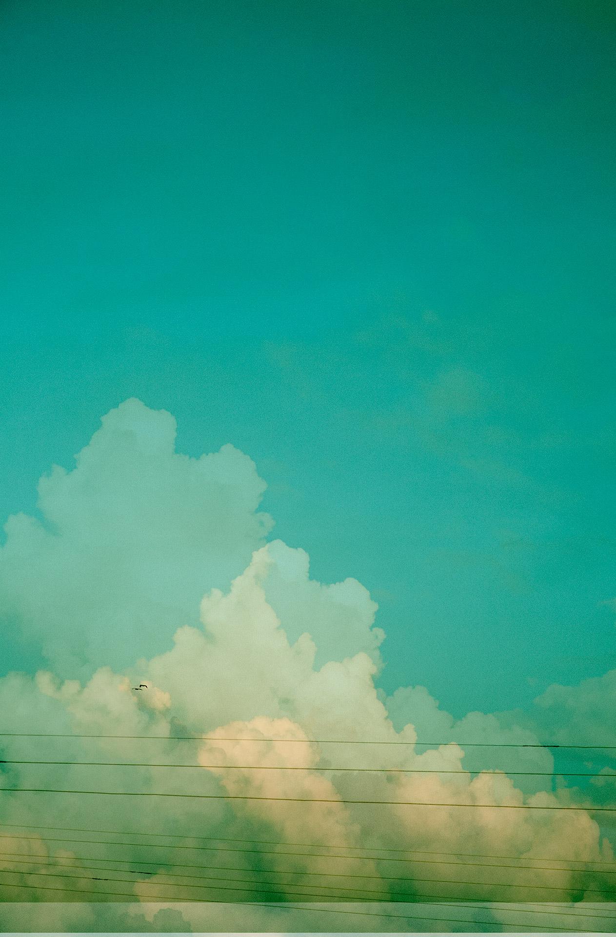 17 trazos de lo que pudo ser un paisaje