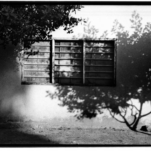 """San Bernardo del Viento # 3"" from the serie ""San Bernardo del Viento"" / Technique: analog photography. Film: Kodak Tmax 400 / Dimensions of the work: cm."