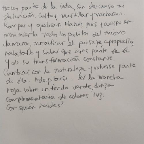 Texto de Natalia Behaine (24.5 x 16.5 cm) viendo a Jean Birolini.