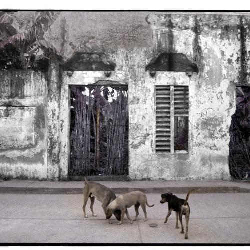 """""""La pared del Viento # 2"""" / Técnica: fotografía análoga, texto, dibujo. Película: Ilford Pan 100 / Dimensiones de la obra: cm."""