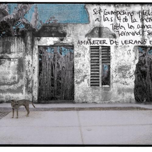 """""""La pared del Viento # 3"""" / Técnica: fotografía análoga. Película: Ilford Pan 100 / Dimensiones de la obra: cm."""