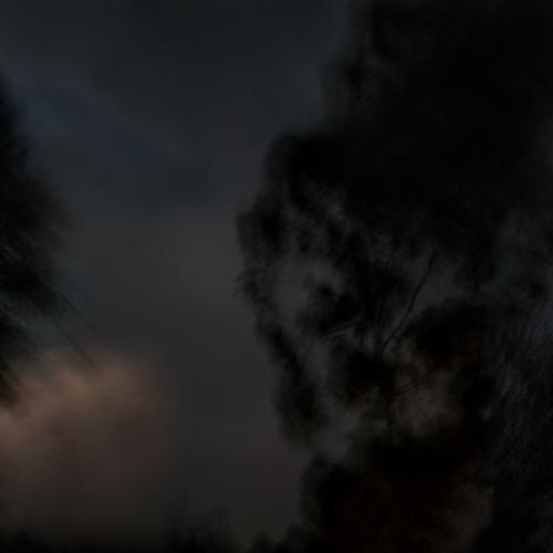 """""""El bosque en llamas # 3"""" de la serie """"El bosque en llamas"""" / Técnica: fotografía y composición digital / Dimensiones de la obra: cm."""