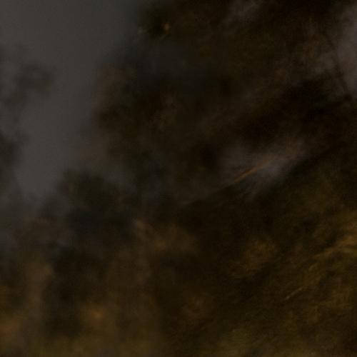 """""""El bosque en llamas # 5"""" de la serie """"El bosque en llamas"""" / Técnica: fotografía y composición digital / Dimensiones de la obra: cm."""